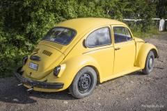 VW-Kaefer-2