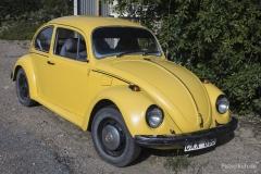VW-Kaefer
