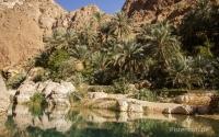 Oman-Wadi-Shab-2
