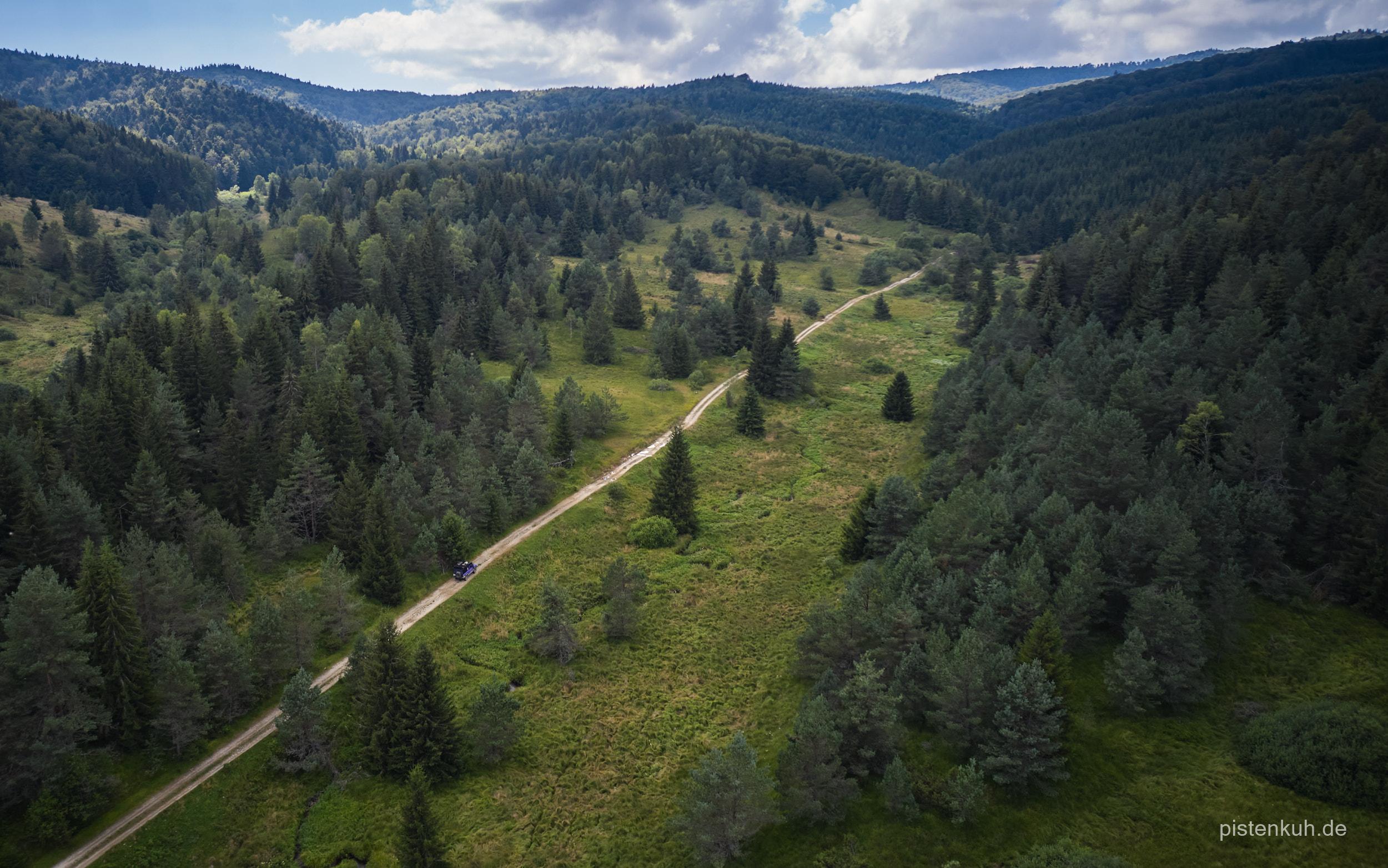 Waldstrecke-rumänien