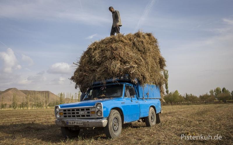 Verkehr-Iran-Pickup