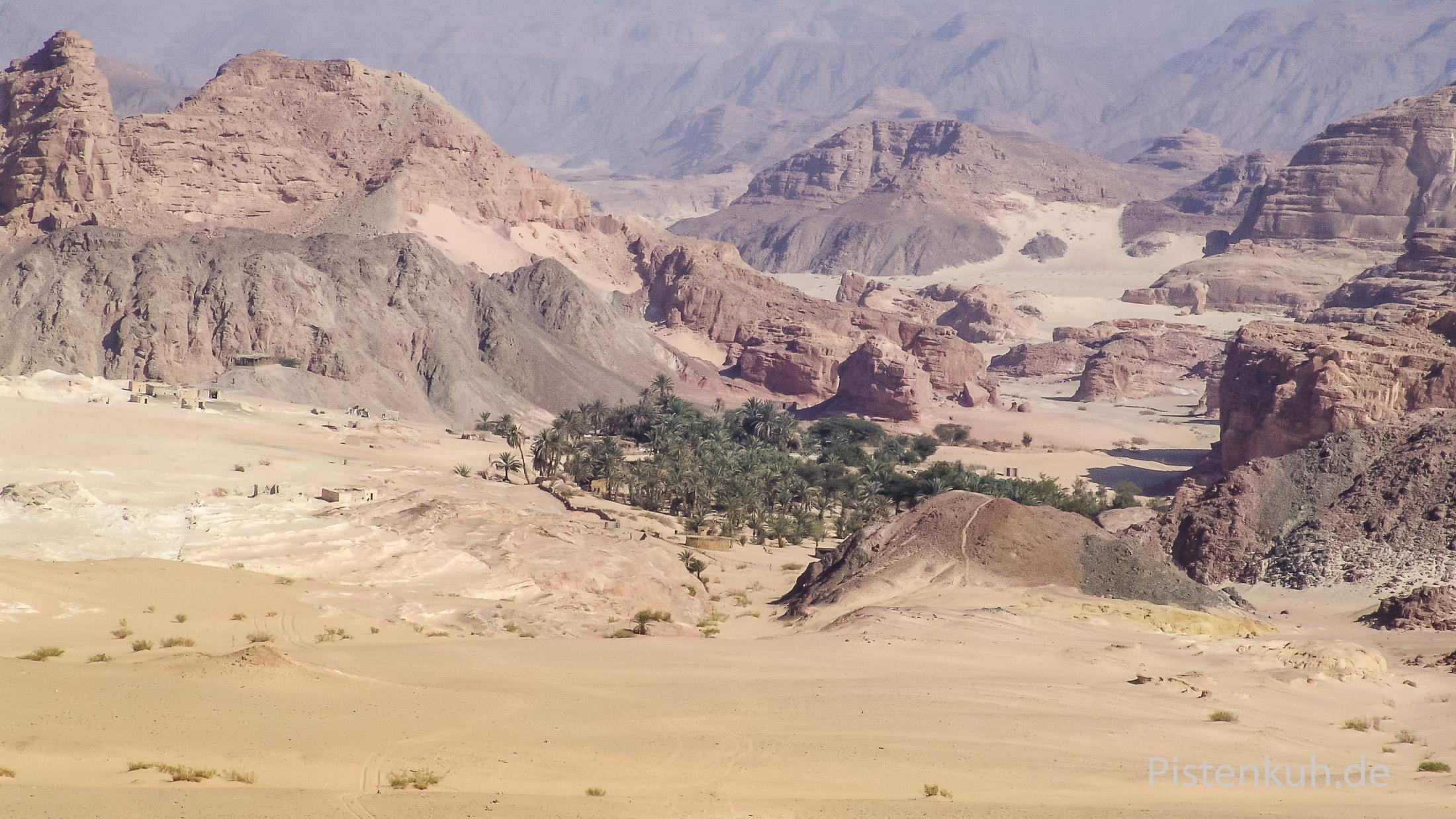 Oase Ain Hudra auf dem Sinai