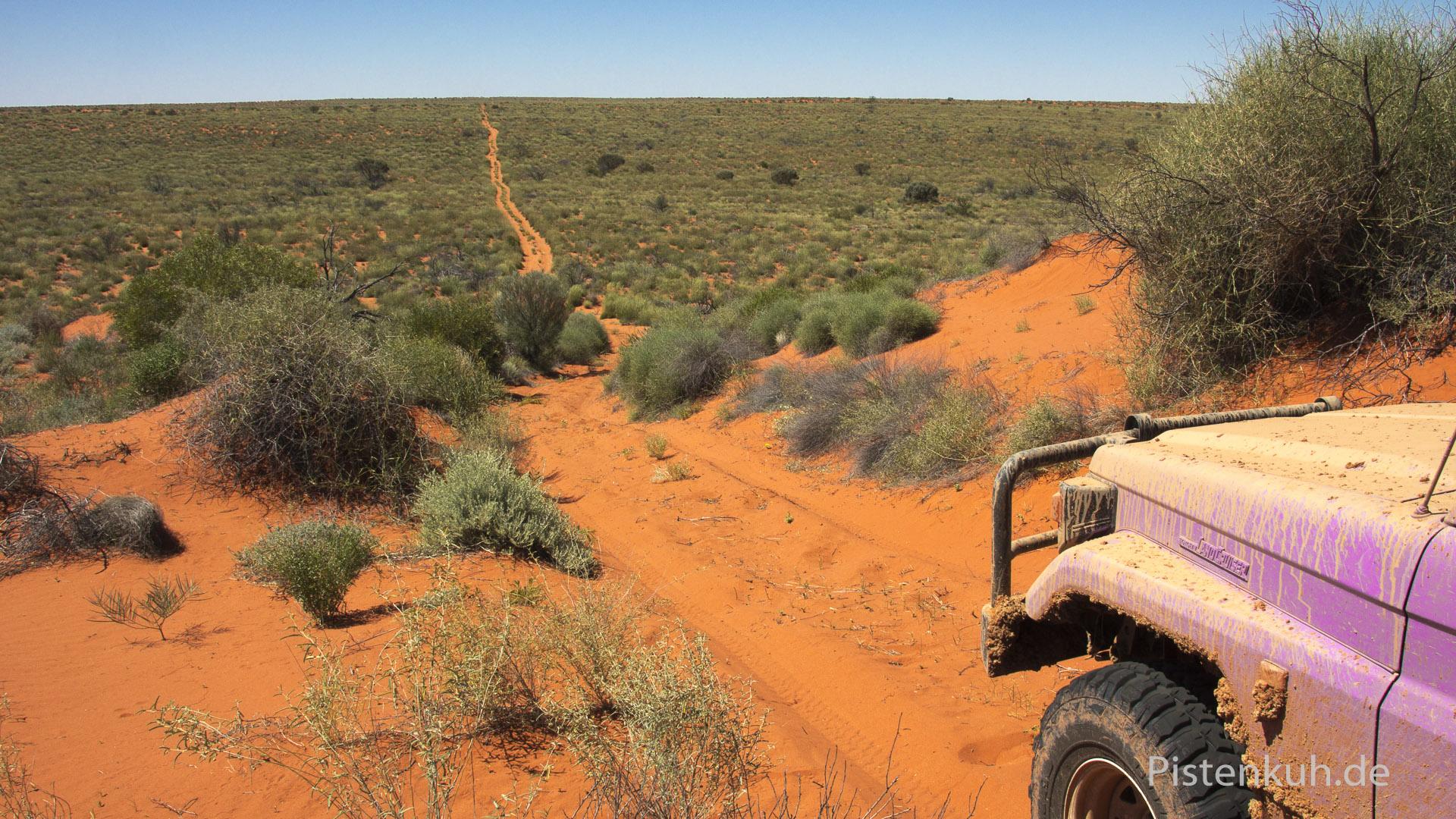 Unterwegs auf der Frenchline durch die Simpson Desert