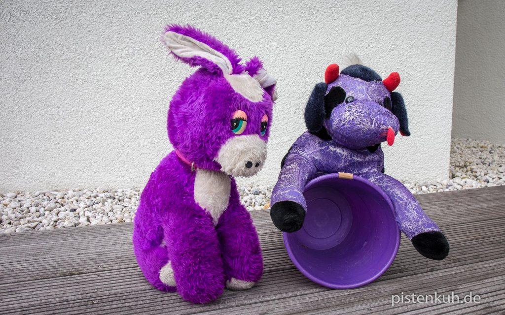 Von Dirk trifft Kuh und Esel