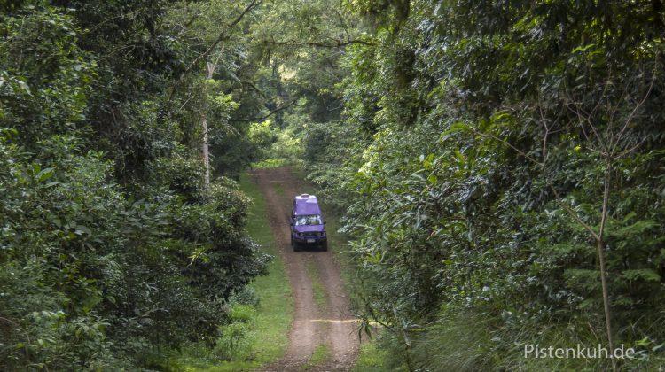 Offroad Australien - Waldgebiete