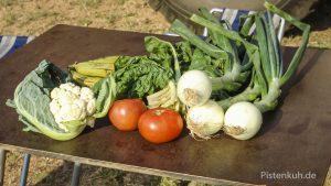 Gemüse frisch aus dem Garten