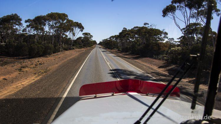 Blick aus einem Road Train