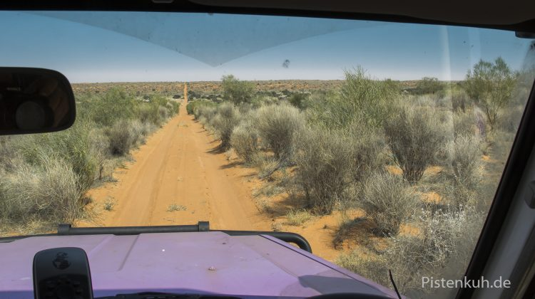 Simpson Desert - French Linie