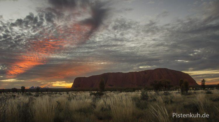 Uluru im Abendlicht