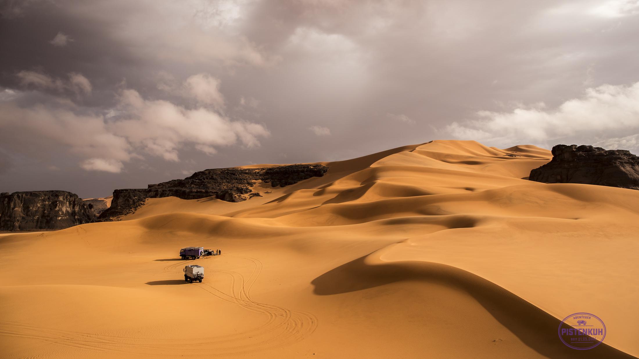 Nach einer Regennacht in der Wüste