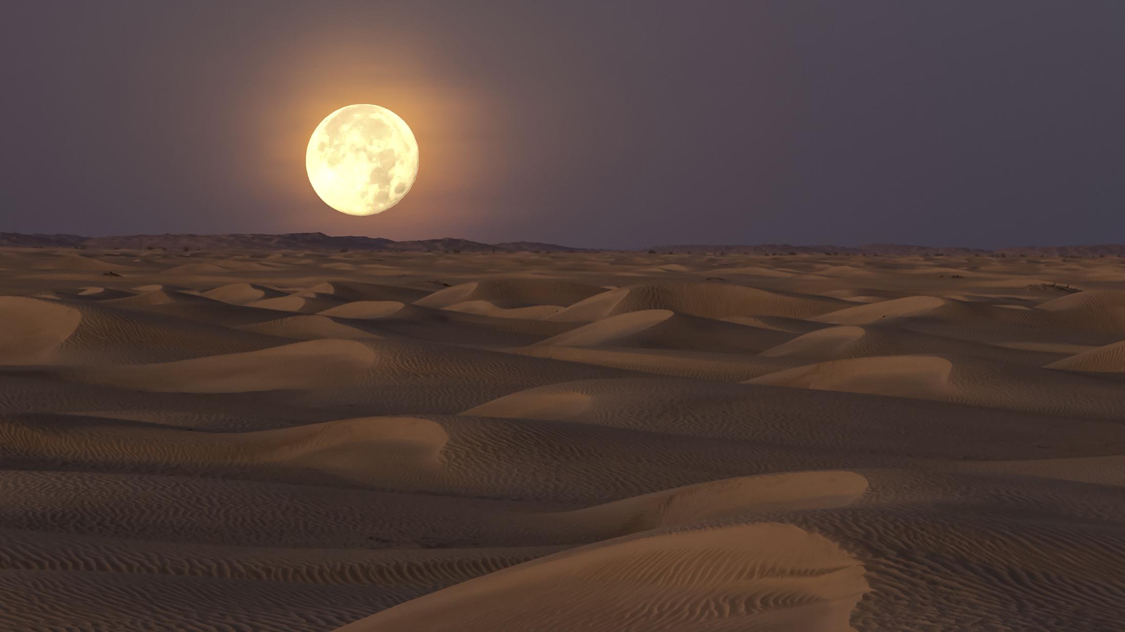 Vollmond in der Wüstenlandschaft
