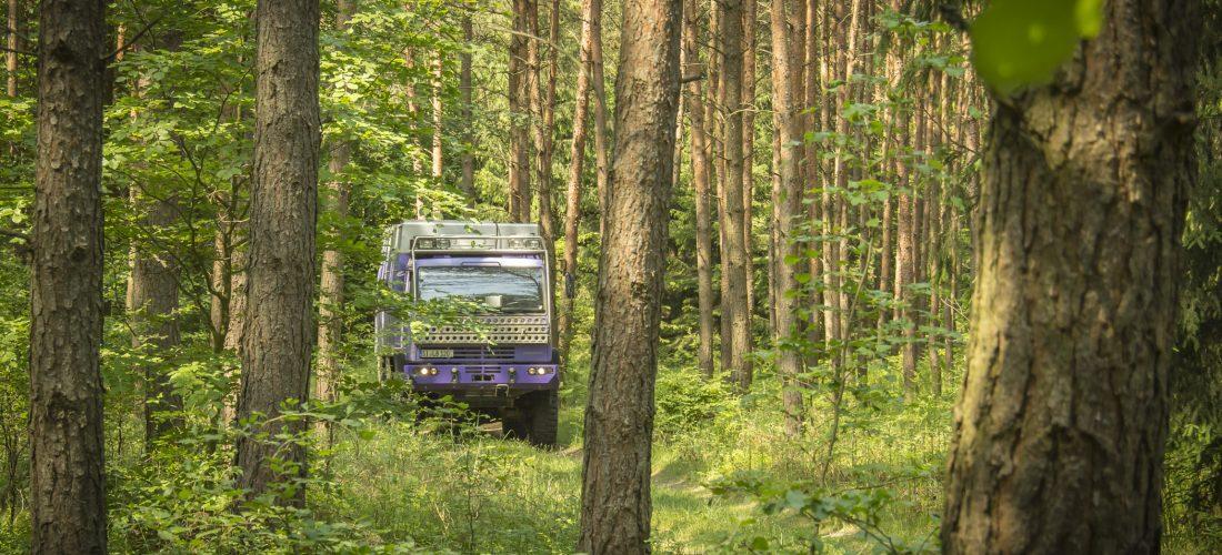 Auf dem Weg in den hohen Norden – Durch die Wälder in Polen