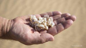 Weihrauch aus Oman