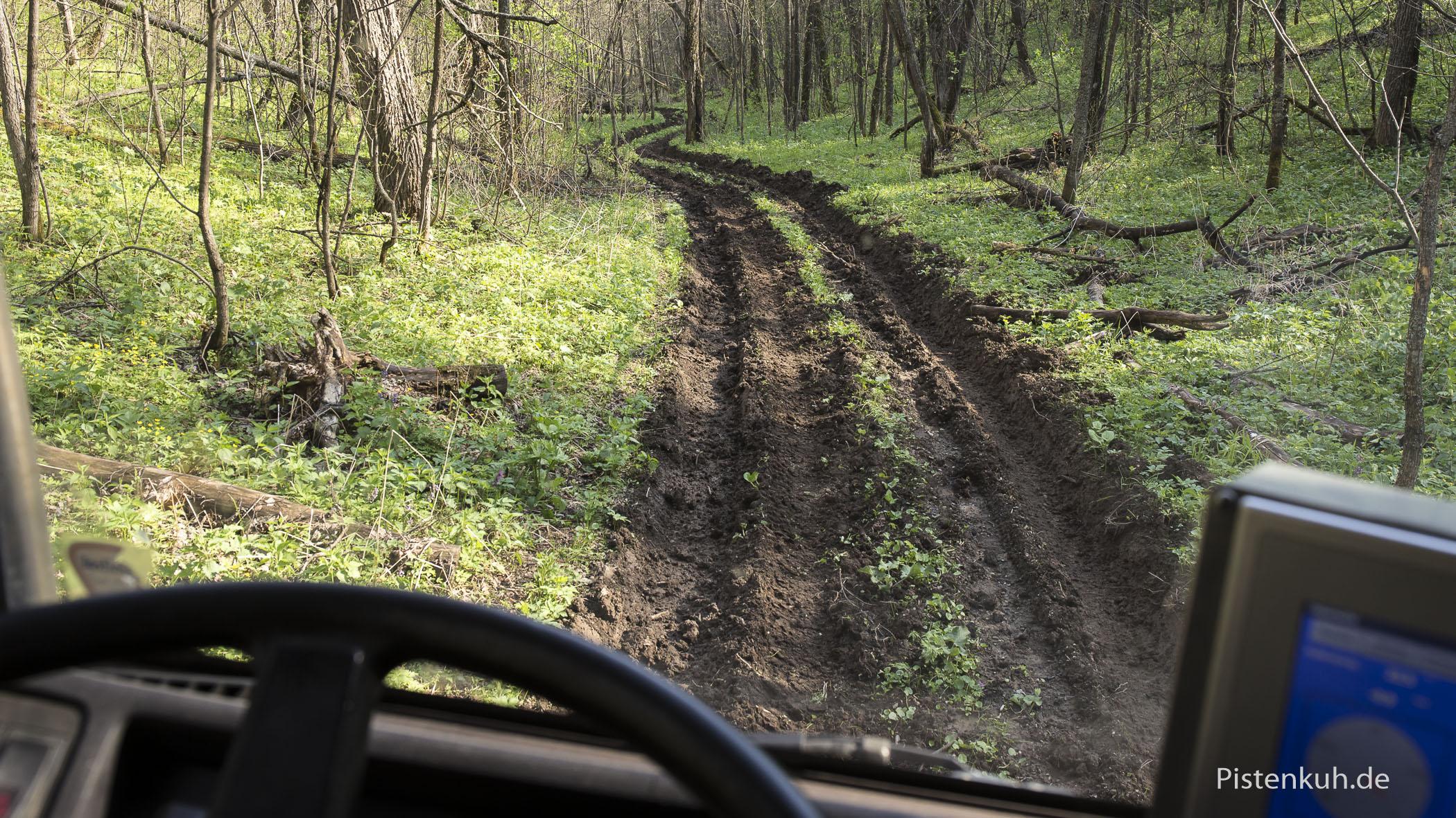 rutschiger Waldweg mit extremen Gefälle.
