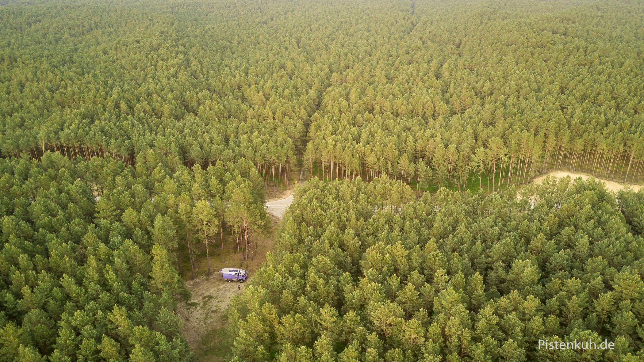 Übernachtungsplatz im Wald