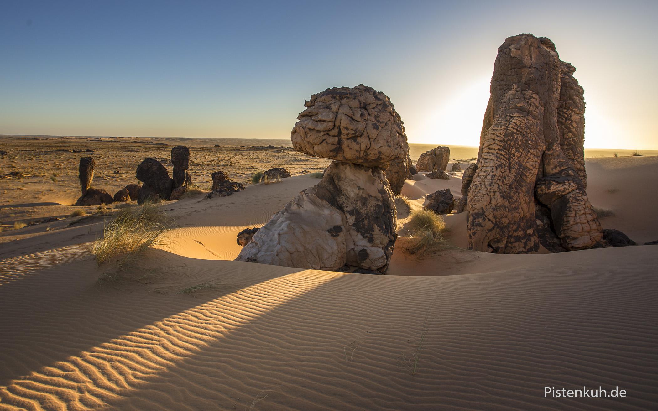 Auf dem Weg durch die mauretanische Wüste passieren wir immer wieder einzigartige Felsformationen.